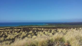 Kiholo Bay Overlook. Photo Courtesy of Jill Sommer