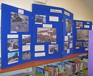 An outreach display for the North Kohala library of the photos by Boone Morrison on archaeological sites on the Kohala Coast.