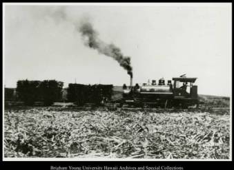 Koʻolau Railroad in Lāʻie carrying sugar cane, circa 1906-1946. Photo courtesy Joseph S. Smith Archives & Special Collections.