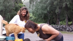 Celeste bonds with Church kitty.