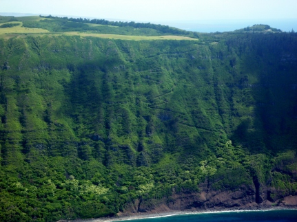 If you look closely, you can see the trail switchbacks winding down the pali. Photo Credit: R. Jones.